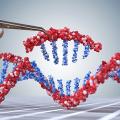 Nobel de química 2020 destaca técnica de edição de DNA